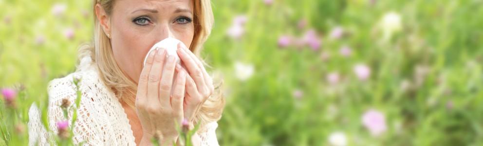 Immer mehr Menschen leiden heutzutage unter allergischem Schnupfen. Kein Wunder, schließlich zählt die allergische Rhinitis, so die medizinischen Fachbezeichnung, zu den häufigsten Atemwegserkrankungen. Tatsächlich haben laut aktuellen Schätzungen gut 40 % der Erwachsenen in Deutschland saisonal oder dauerhaft mit ihm […]